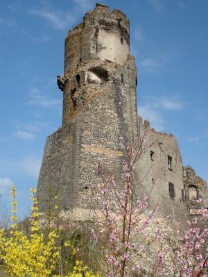 Visite Commentee Du Chateau