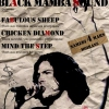 affiche BLACK MAMBA SOUND - FABULOUS SHEEP - CHICKEN DIAMOND