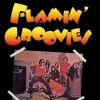 affiche FLAMIN' GROOVIES - TEENAGE HEAD TOUR 2019