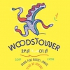 affiche FESTIVAL WOODSTOWER 2019 - VENDREDI